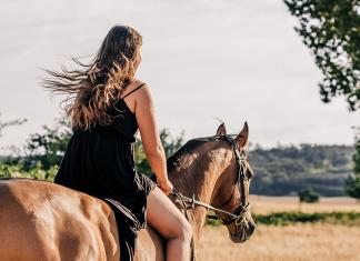 domare il cavallo