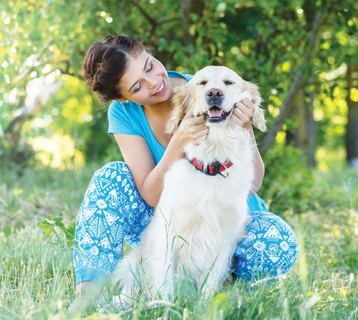 cane estate sorriso maxizoo