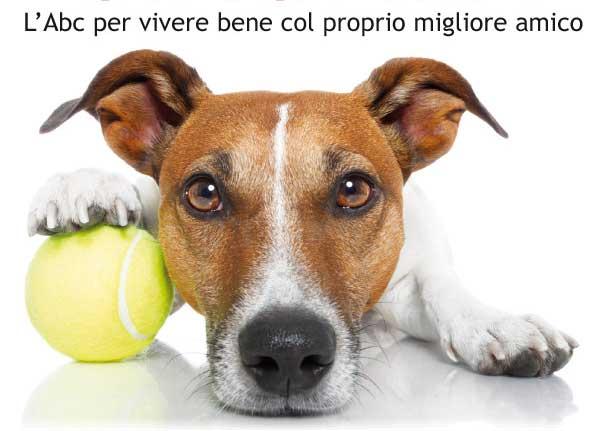 Educare o addestrare un cane come e perche'