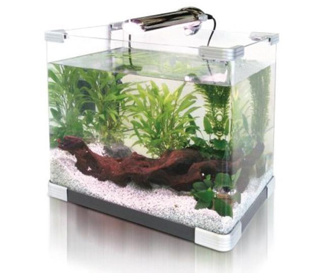 Saper-scegliere-un-acquario-innovativo