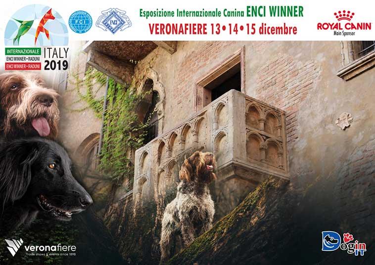 enci winner 2019 esposizione canina