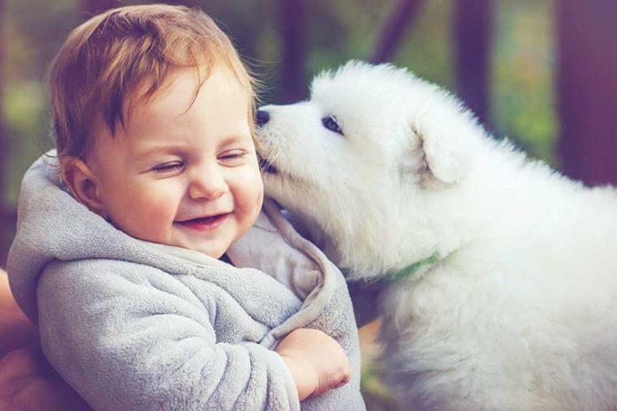 convivere-con-il-cane-e-i-bimbi