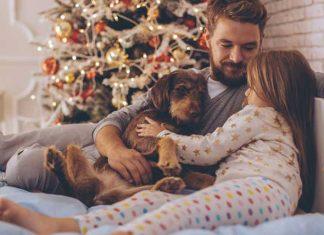 famiglia-cane-regali-sul-letto-abbracciati