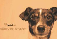 HOTEL-PET