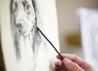disegno-cane-a-matita-