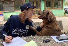 ragazza-guardia-eco-zoolofila-con-il-cane