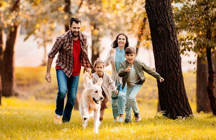 Famiglia al parco per educare il cane