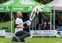 Adrian Stoica con il suo cane nella disciplina di disc dog