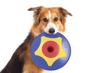 TROTTOdisk frisbee