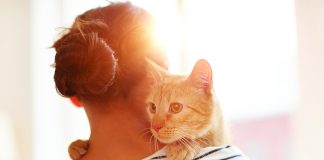 gatto-tranquillo-sulla-apalla-della-sua-padrona
