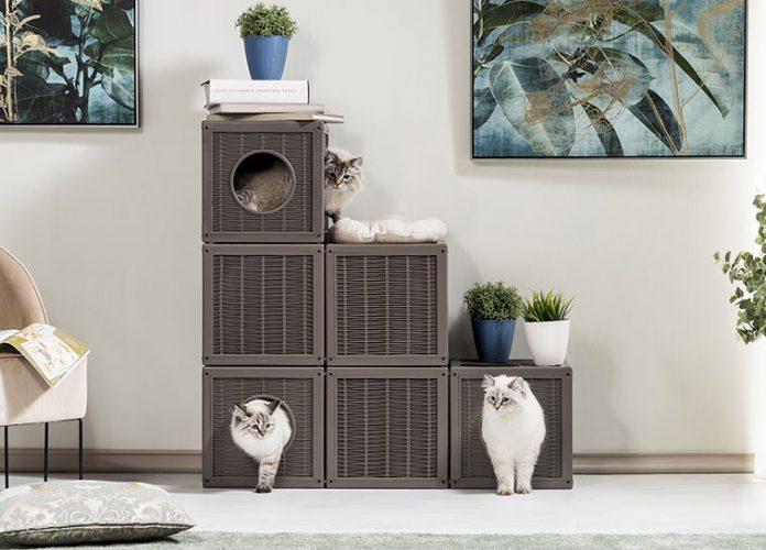 Bamapet qublo un castello per gatti