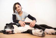 Giada-di balto-massaggi-per-cani