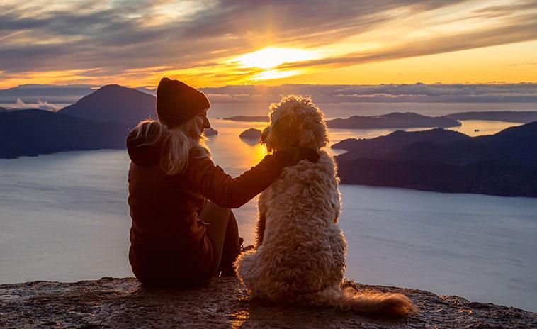 Ragazza con il proprio cane a guardare il tramonto