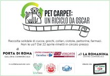pet carpet un riciclo da oscar