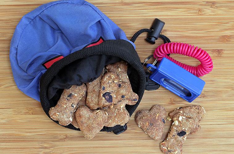 Cibo per cane associato al cliker training per addestramento
