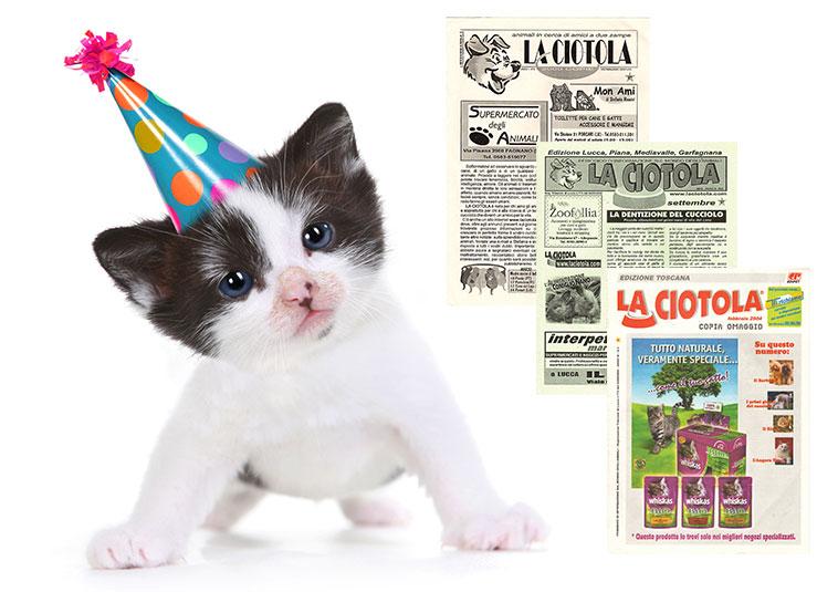 Gattino con il cappellino per festeggiare il compleanno della rivista petfamily con immagine della rivista quando ancora si chiamava La Ciotola