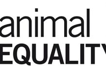 Petizione Animal Equality