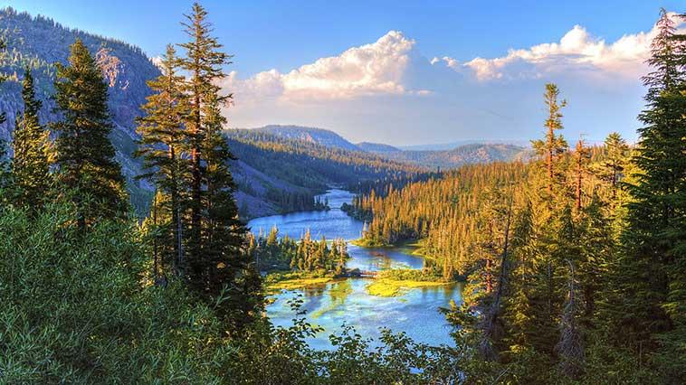 Giornata della terra immagine di un fiume e bosco